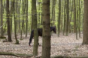 merle-hettesheimer-umschulung-fotograf-berufsbegleitend-koeln-05