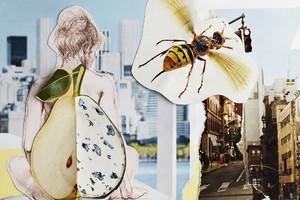 ausbildung-zur-fotografin-fotoakademie-koeln-anna-louisa-belz-studium-fotografie-10