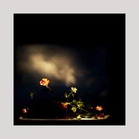 frauke-staerk-ausbildung-fotografin-studium-fotografie-08